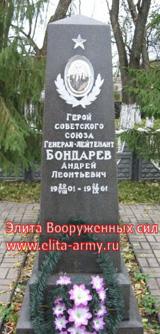 Pine Belgorod region