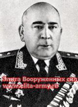 Naneyshvili Vladimir Vardenovich